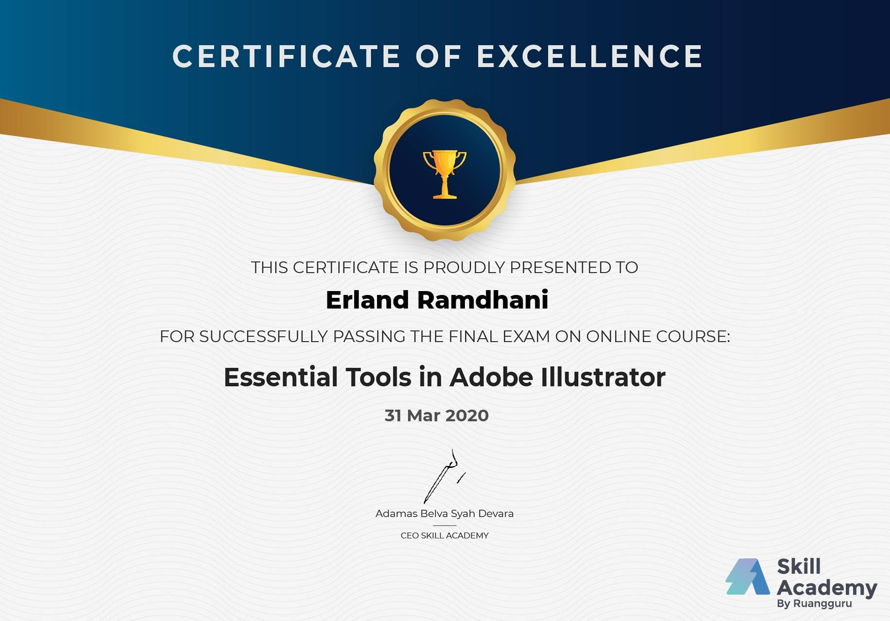 Essential Tools in Adobe Illustrator Certificate